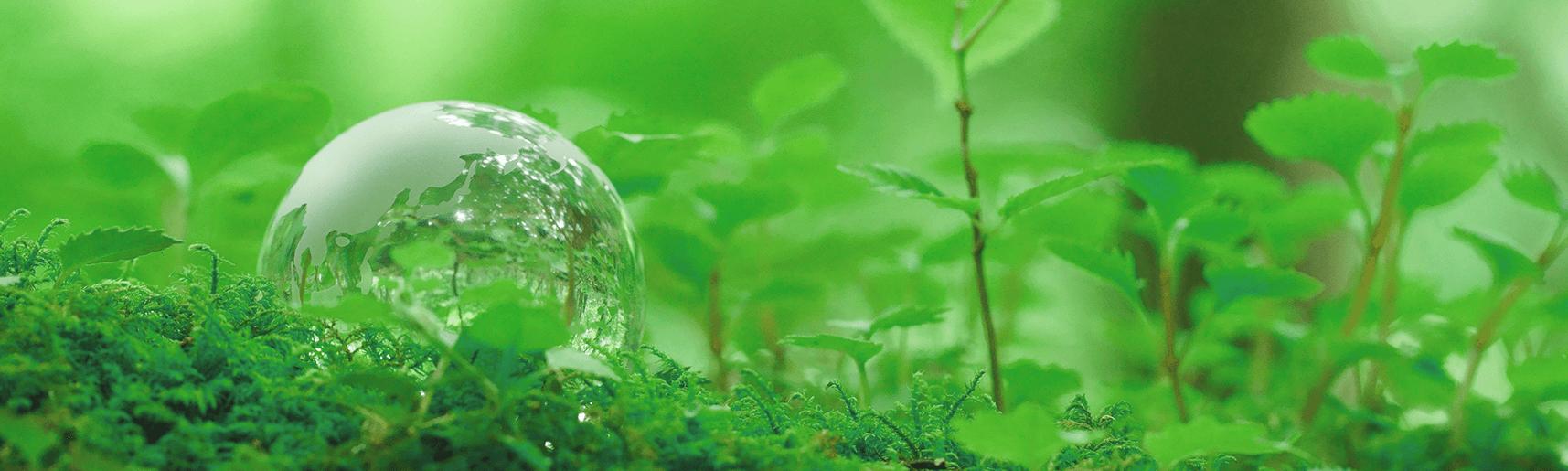 販促ツールのDX化による廃棄資源の削減